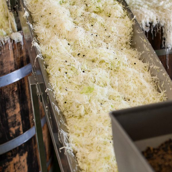 Sauerkraut Produktion